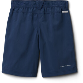 Columbia Silver Ridge IV Shorts Boys collegiate navy